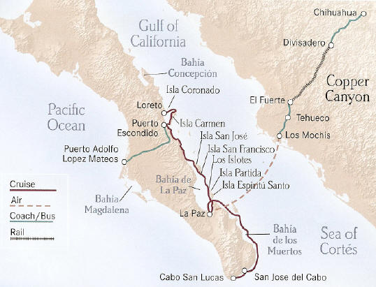 Sea of Cortes - Sea of Cortes -Whales and Wildlife plus Copper Canyon